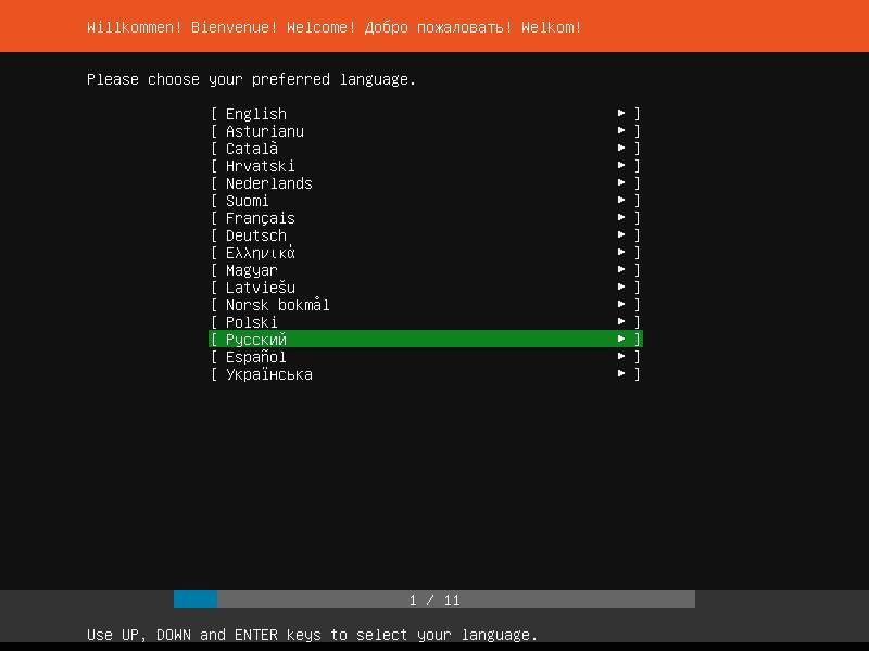 выбор языка ubuntu 18.10