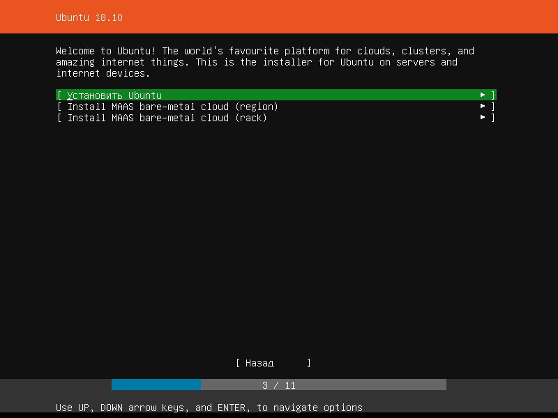 Варианты установки ubuntu 18.10