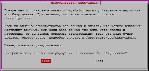 nginx install phpmyadmin